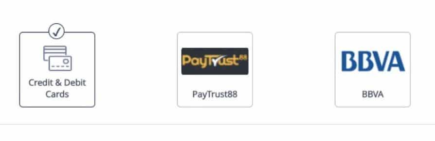 metode pembayaran kartu kredit, Skrill, Neteller dan VPay